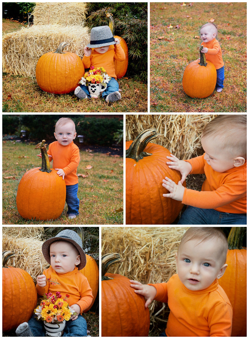 Baby Photography fall mini session