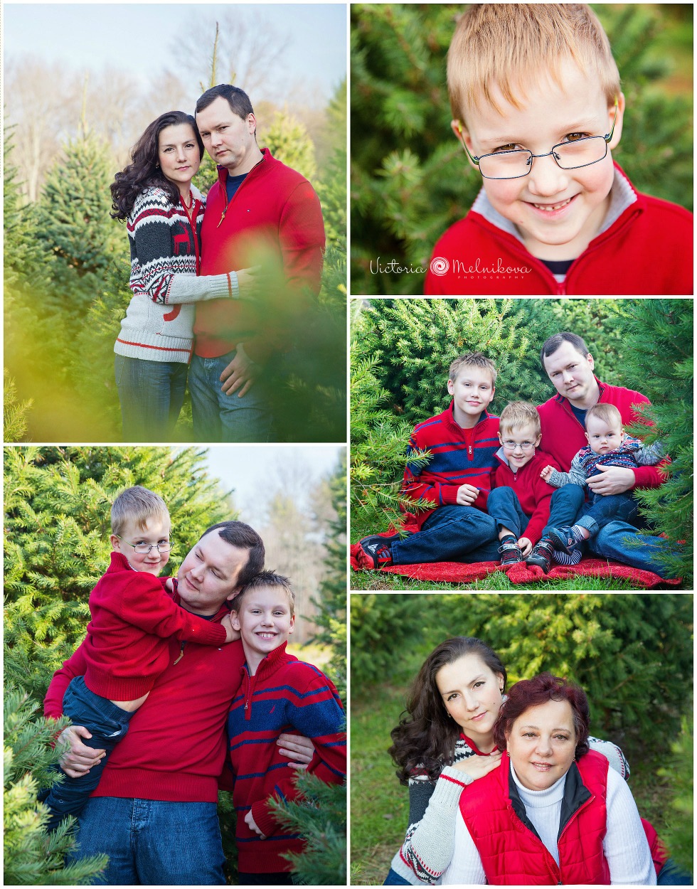 Christmas farm family session