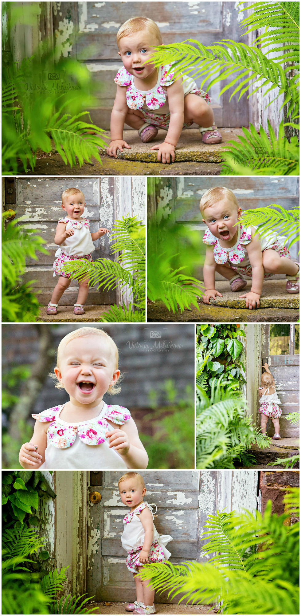 Willowwood Arboretum baby, kids Session Photos